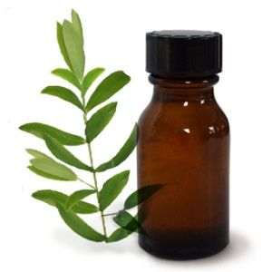 tea tree oil Эфирные масла для сухой кожи – 5 лучших масел